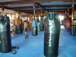 Fairtex bag area